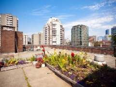 Enjoy a bright eastern exposure in this spacious full sized one bedroom at Downtown Vancouver's Anchor Point!