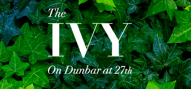 The Ivy Logo 2 Vancouver Presales Mike Stewart