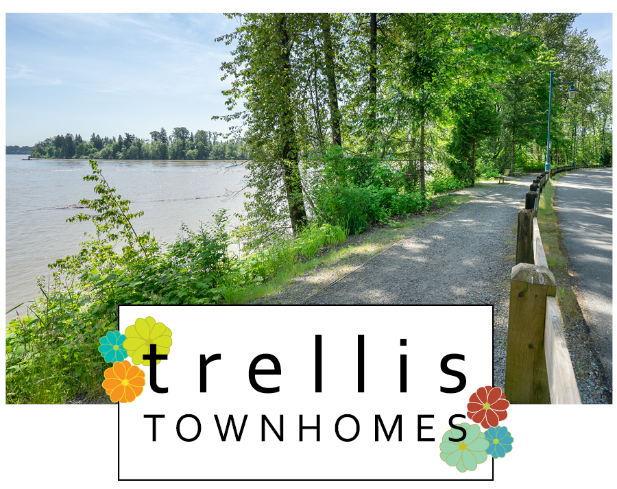 Trellis Townhomes – Plans, Availability, Prices