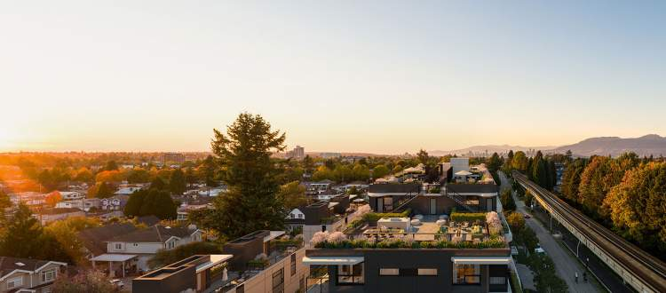 Clive's rooftop patio, with barbecue and seating areas, aims to bring neighbours together.