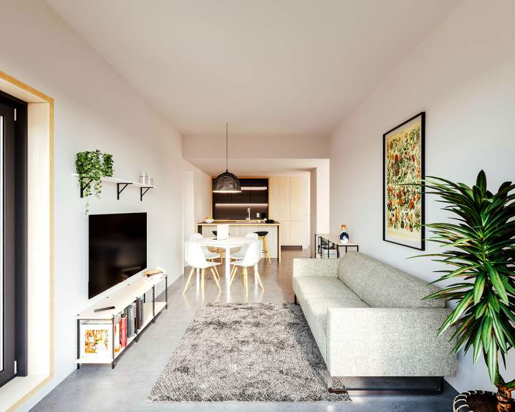 European-inspired homes feature clean, contemporary interiors.