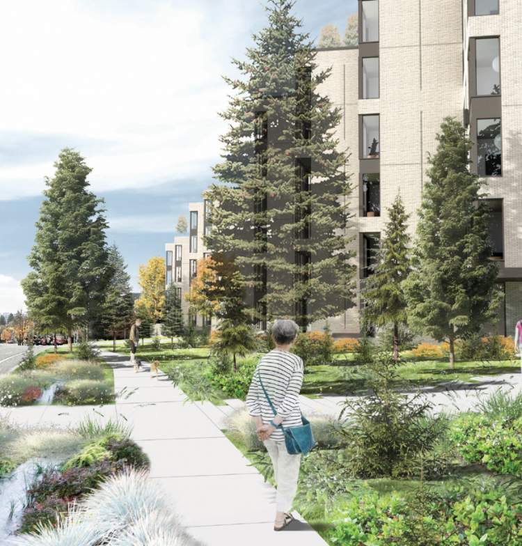Strategically placed lawn areas will maintain sightlines and provide dog-walking spaces.